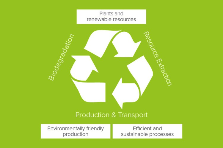 The graphic shows the cycle from certified raw material extraction through environmentally friendly manufacturing processes to environmentally friendly materials and products.