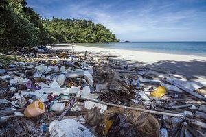 Ein Strand mit Wäldern im HIntergrund ist von Plastikmüll übersäht. Nebenstimmung.